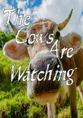 奶牛在注视汉化版