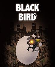 黑鸟(BLACK BIRD) v中文免安装版