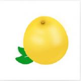 黃柚水印相機