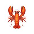 龙虾体育ios