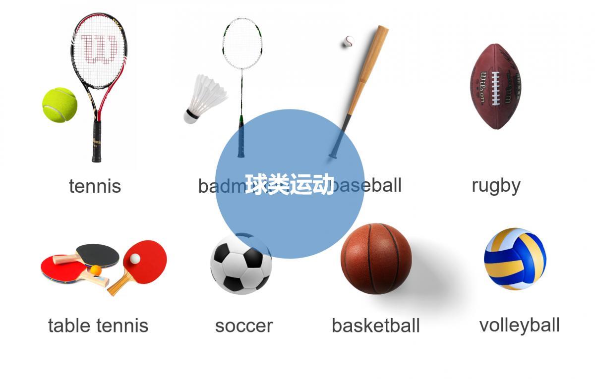 球类竞技游戏大全