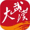 大武漢app