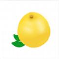 黃柚水印相機app