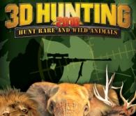 3D打猎2010完整硬盘版