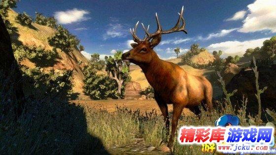 坎贝拉狩猎探险游戏高清截图1