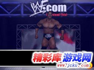 世界摔跤娱乐2008完美版