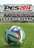 实况足球2014:决战世界杯汉化版