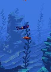 著名潜水员